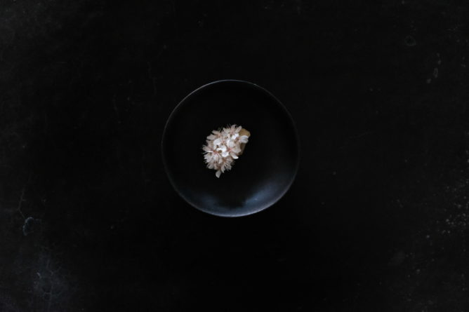 Small white flowers arranged on a dark plate centered on a dark background